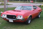 Used Ford Torino