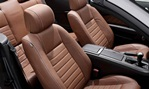 2014-Ford-Mustang-seating 2