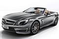 2013 Mercedes-Benz SL 65 AMG 45th Anniversary